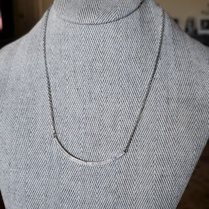 Chloe +Isabel Silver Necklace
